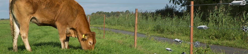 Electric Fence Posts For Permanent Or Mobile Fences Gallagher