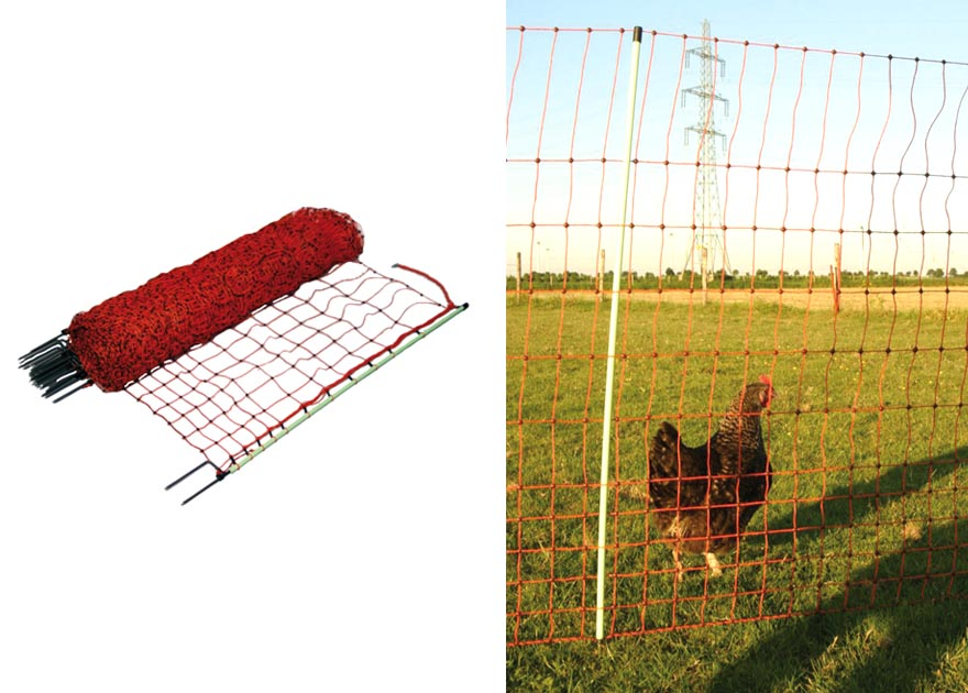Safe poultry electric fences for chickens | Gallagher